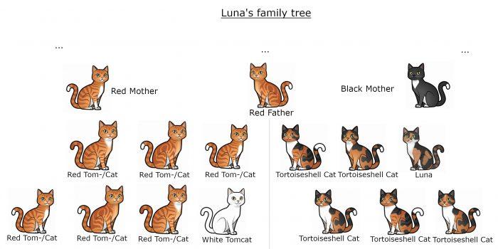 Luna's_Stammbaum_Englisch